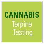 Terpine Testing